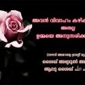 single_pink_rose-wallpaper-1920x1080